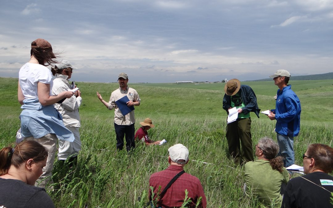 Get involved in one of Wisconsin's many great citizen science opportunities