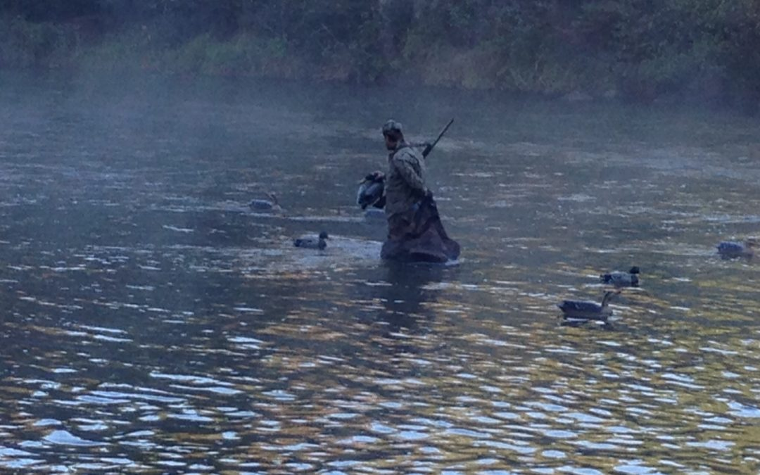 Day V: Waterfowl and wild rice (Thursday, Oct. 1)