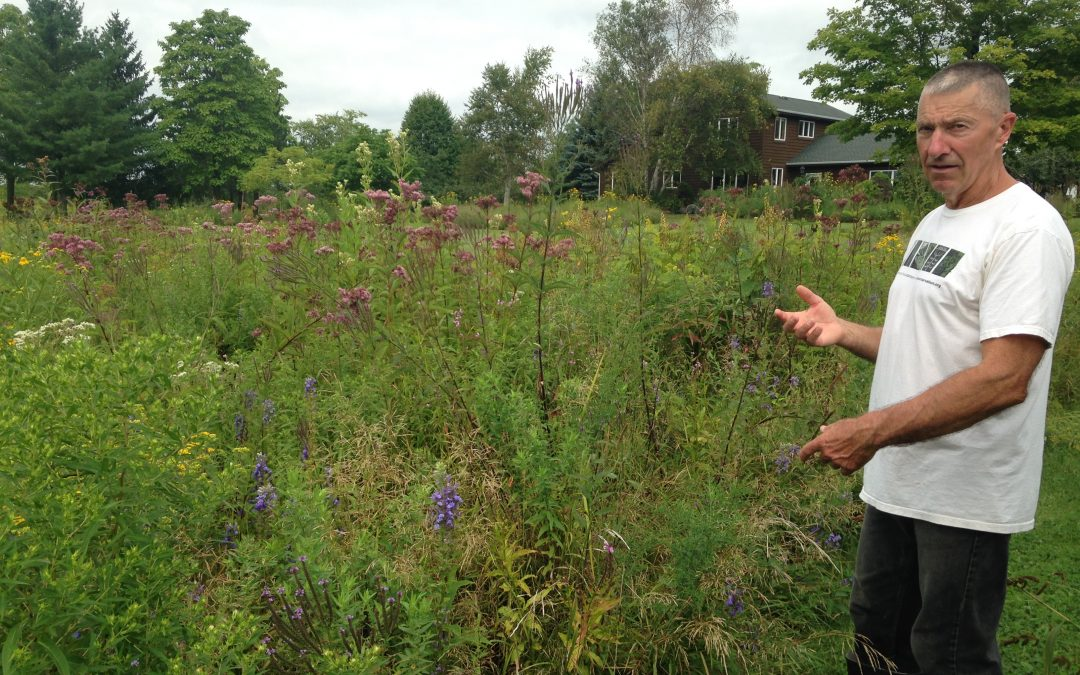 Wetland Restoration in Wisconsin: A private landowner tells his story