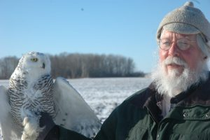 Dave Brinker with Badger, a young female snowy owl, just before her release. Photo by Mike Senn.