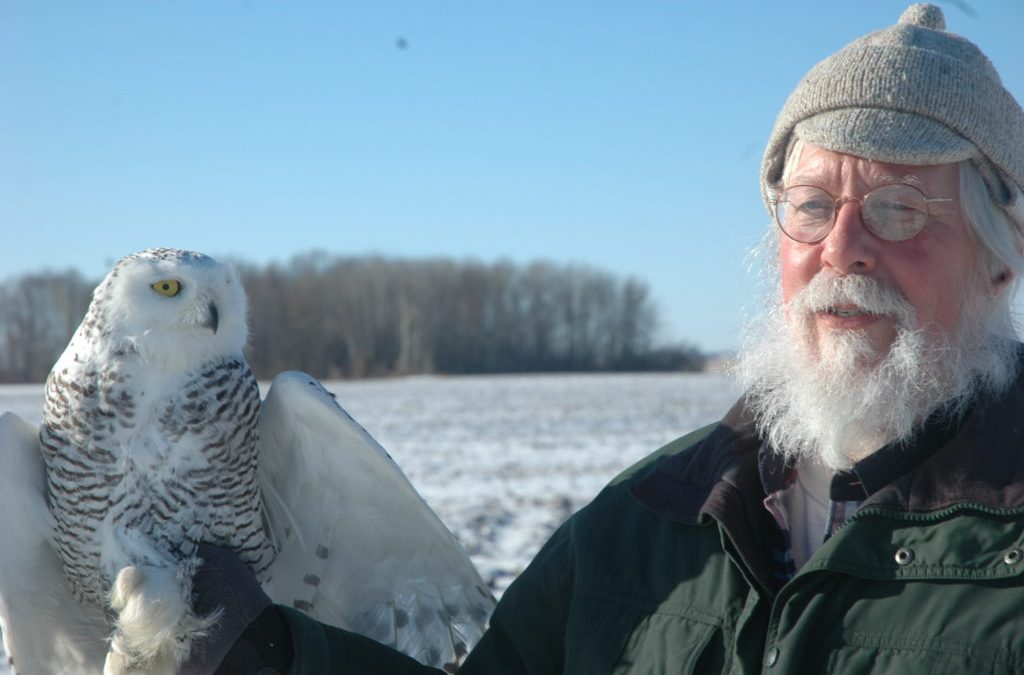 Tracking Wisconsin Snowy Owls