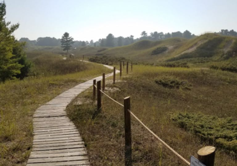 Wooden path through rolling hills