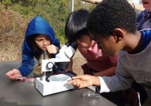 Kids With Telescope 768x540