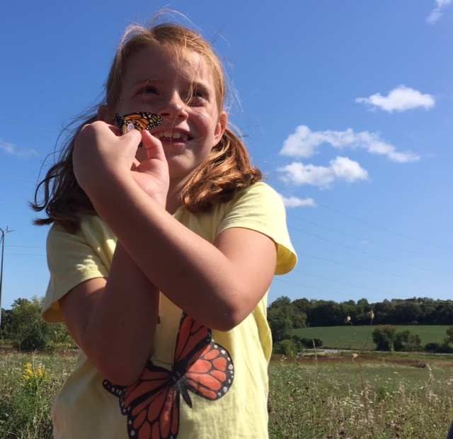 Photo of little girl holding a monarch butterfly that has been tagged on the monarch tagging Field Trip.