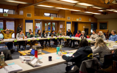 Exploring Best Practices in Conservation Planning