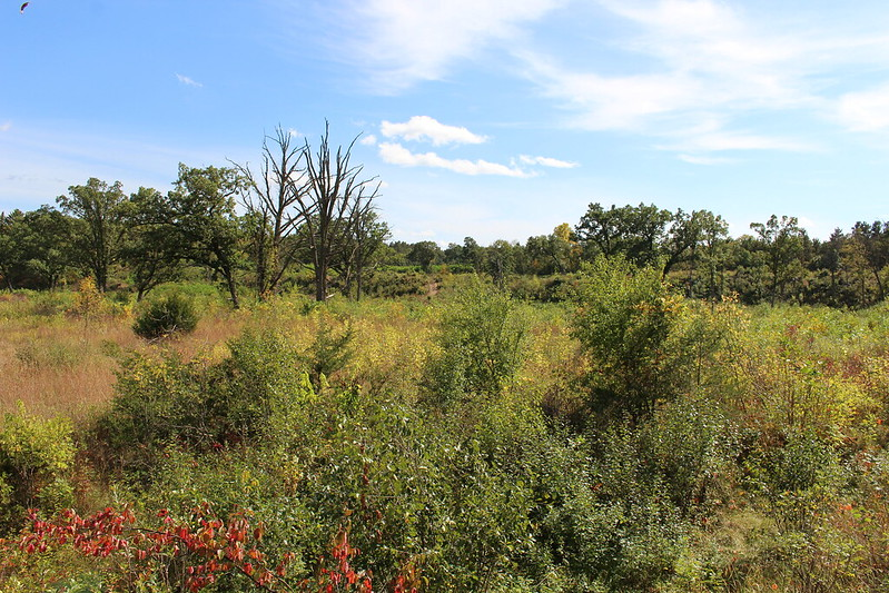 Lower Chippewa River Basin Conservation Fund