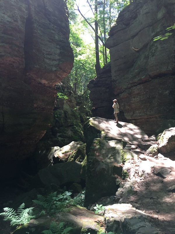 Helen G. Ritter State Natural Areas Fund