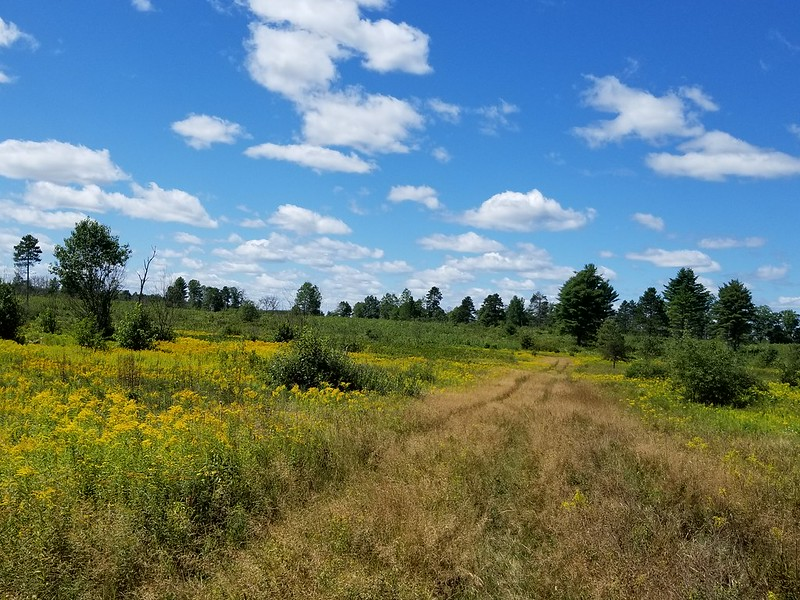 Cherish Wisconsin Outdoors Fund