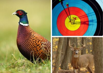 Wisconsin's Wild Game