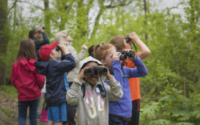 Bringing the Birdathon to Your Classroom