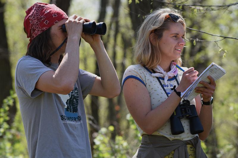 Team Reckless Wrens look for birds