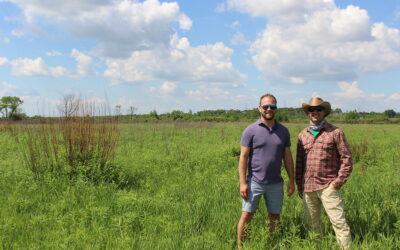 Sweet, sweet habitat: Restoring the Sugar River Wetlands